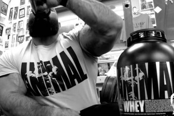 animal whey universal nutrition