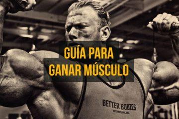 guía para ganar musculo