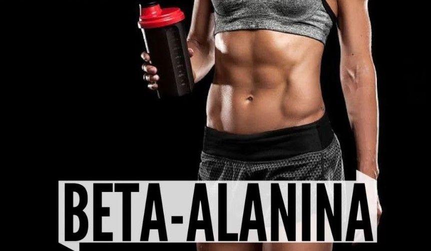 beta alanina aminoácido