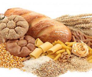 origen de los carbohidratos