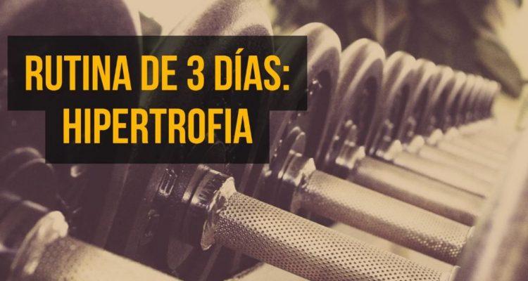 Dieta para ganar masa muscular y definir pdf