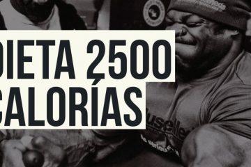 dieta 2500 calorías