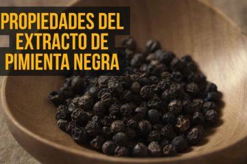 extracto de pimienta negra
