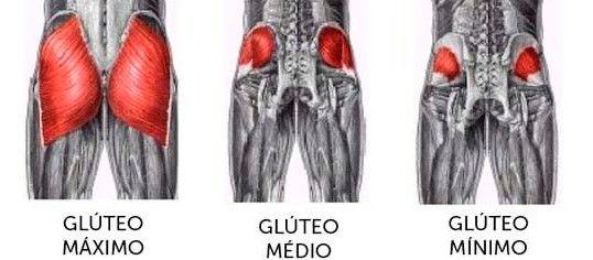 regiones del glúteo