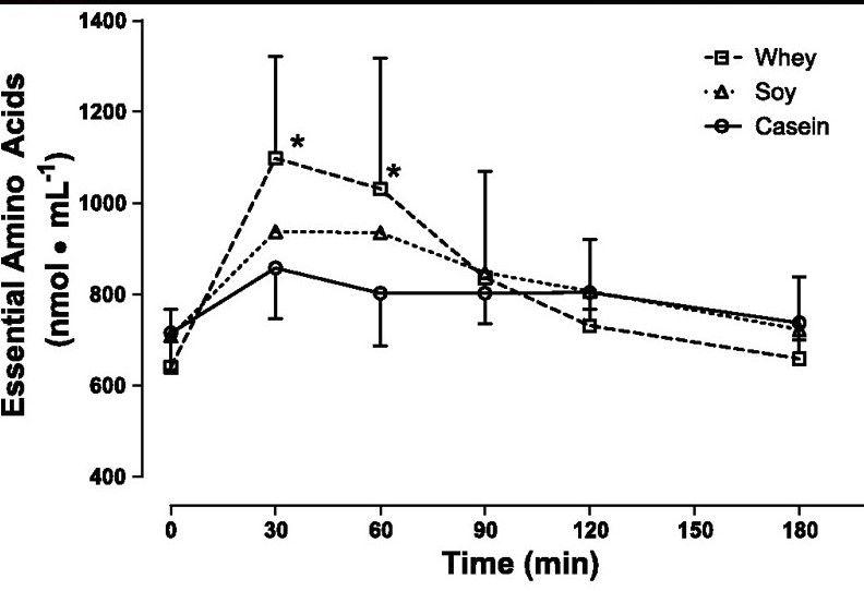 absorción aminoácidos caseina