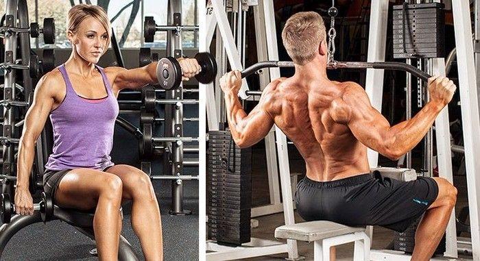 entrenamiento musculación