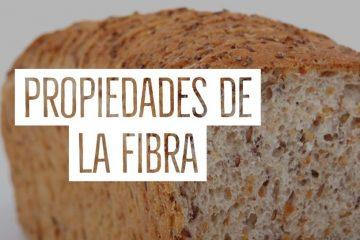 propiedades de la fibra